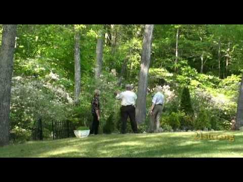 Lessons from Barbara's Garden - Barbara Buzzard & J. Dan Gill