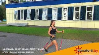 Санаторий Жемчужина - обзор ходьбы скандинавской, Санатории Беларуси