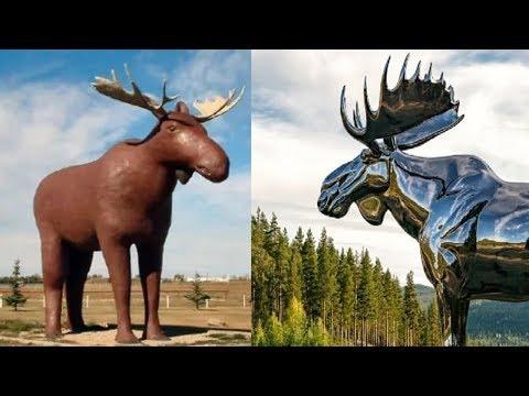 Battle of the massive moose statues