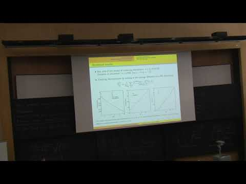 """Ricardo Ferreira """"Thermalization in axion inflation"""""""