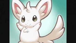Minccino Tribute (Pokemon)