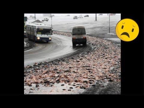 На Камчатке дороги засыпаны рыбой