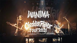2021.6.14 「Cheddar Flavor Tour 2021」 at ZEPP TOKYO ダイジェスト