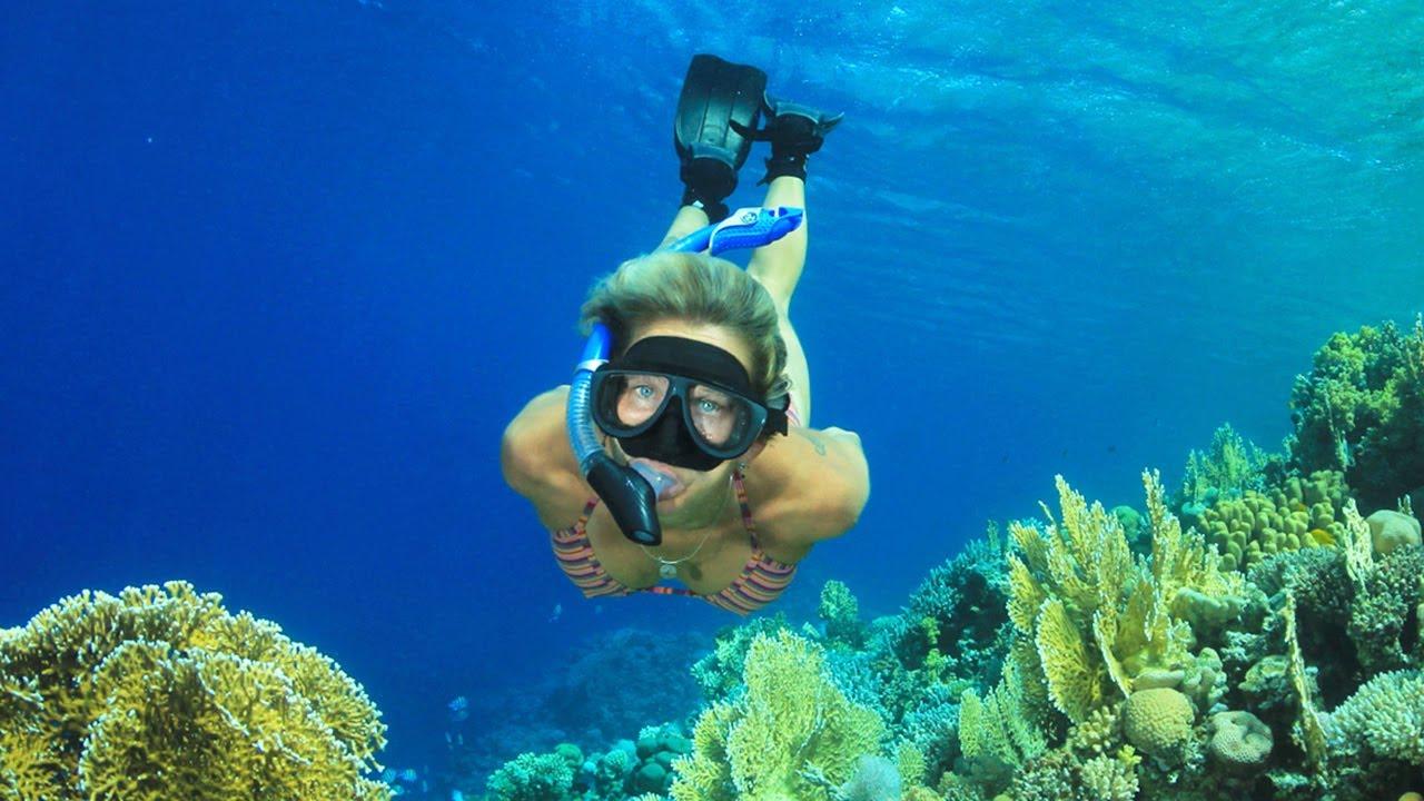 Molokini Scuba Diving | Molokini Dive Trips | Diving Molokini ...