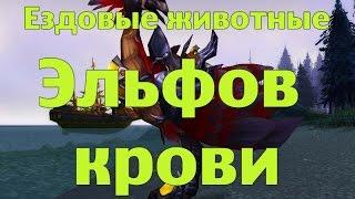 Ездовые животные Эльфов Крови или где купить стремительных Крылобегов