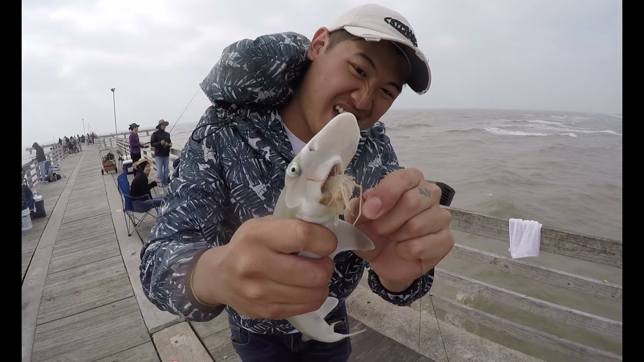 how to catch fish off a pier