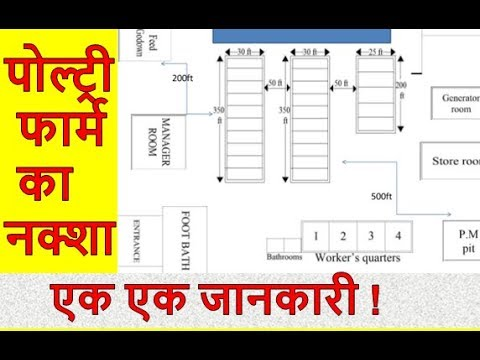 poultry-farm-design-with-complete-minor-details.-||-english-translated-||-poultry-india-tv-||