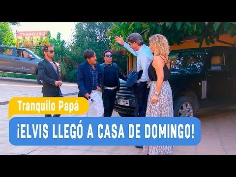Tranquilo Papá - ¡Elvis llegó a casa de Domingo! - Mejores momentos / Capítulo 2