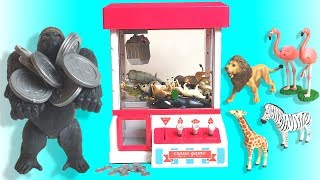 Cute animals Toys Game in the Claw Machine animals Names