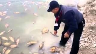 Kacak balık avı operasyonu