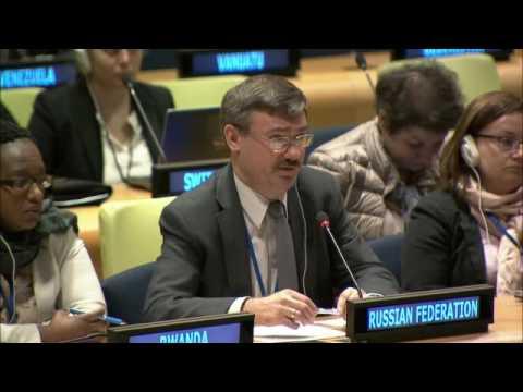 Российская делегация почтила память Виталия Чуркина