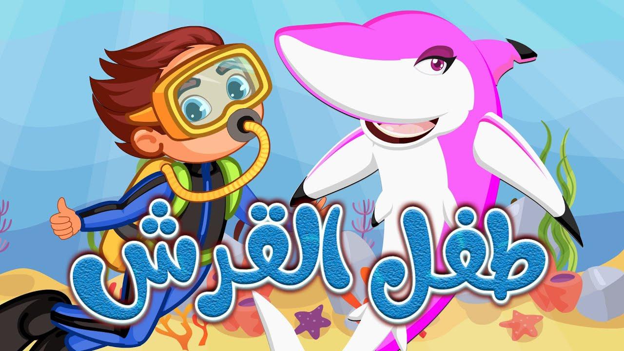 Dana Tv   اغنية طفل القرش   ماما القرش بابا القرش   بيبي شارك بالعربي