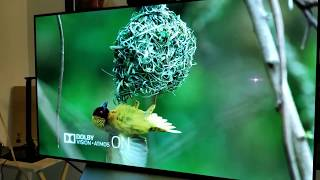 Testing Both Dolby Vision & Dolby Atmos on my C7 OLED LG TV & Onkyo TX NR 676 Reciever