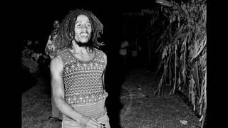 Bob Marley - Ambush in the night - Rare Demo Extended Lyrics