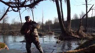 (21) Весенняя охота на селезня с подсадной уткой.