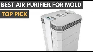 Best Air Purifiers for Mold Spores in 2018
