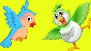 Птахи України  мультики українською мовою