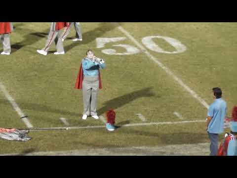 Dale County High School Marching Band 101317