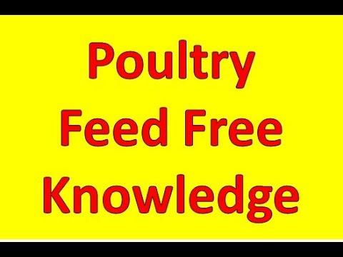 🐓 Poultry Feed Formulation Part-1|  Poultry Farming Business Plan Documentary For Poultry Feed ||