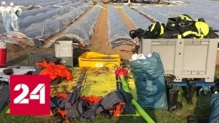 В Германии назвали предварительную причину авиакатастрофы под Франкфуртом - Россия 24