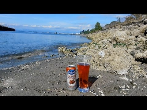ocean-spray-sparkling-cranberry-juice-review