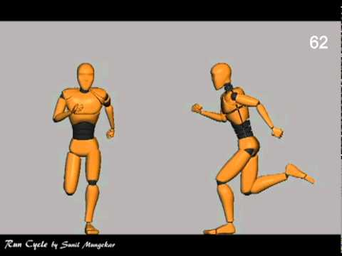 Run Cycle - Animation Reference