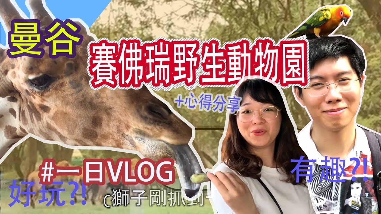 [曼谷直擊]泰國Safari World 一日Vlog//這是一場冒險的旅程 (泰國賽佛瑞野生動物園) How is it in Safari world in Bangkok ...
