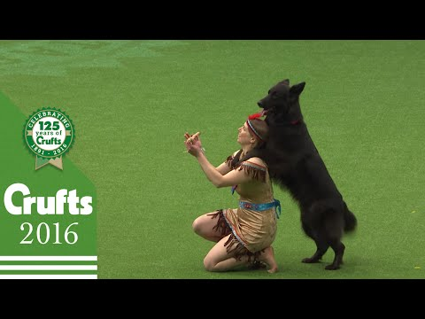 Unmissable Moments From Day 2 | Crufts 2016