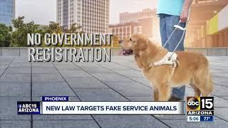 Arizona legislature cracking down on fake service animals