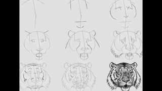 Мастер-класс как рисовать карандашом поэтапно