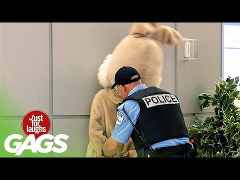 Mascot Gets Arrested In Public...