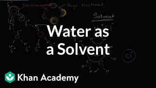 Water as a solvent | Water, acids, and bases | Biology | Khan Academy