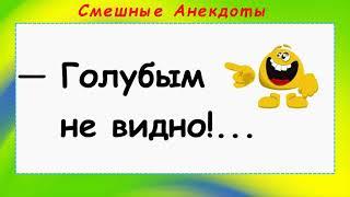 Анекдоты смешные до слёз Сборник смешных Анекдотов Голубым не видно Выпуск 21