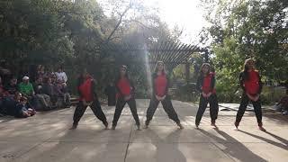 Texas Zobha - Performance at Umlauf Family Day November 2019