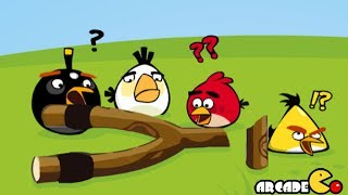 Angry Birds Go Crazy - Angry Birds Eggs Saving Adventure