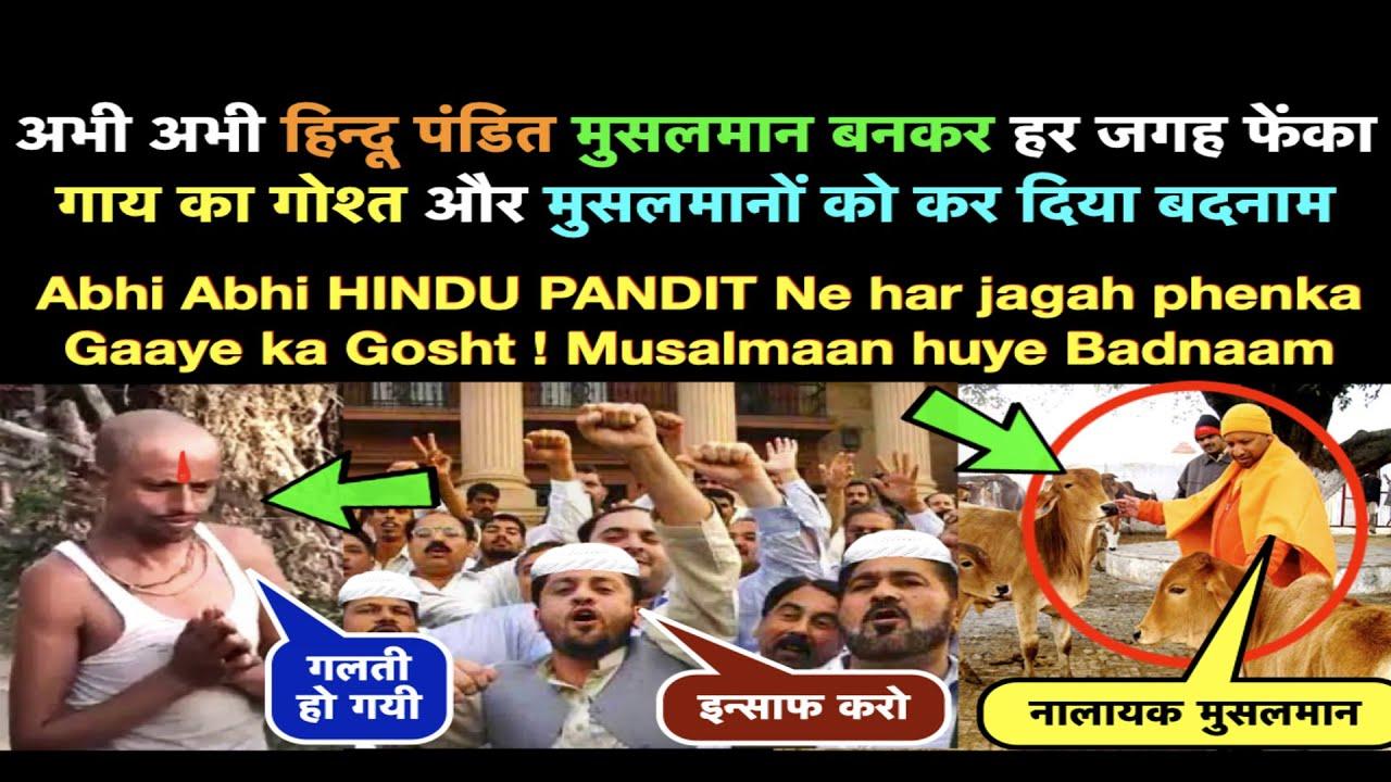 HINDU Pandit ne Musalmaan bankar Gaay ka Gosht Khaaya || Hindu Muslim Dan.ga Karane Ki Sazish Nakam