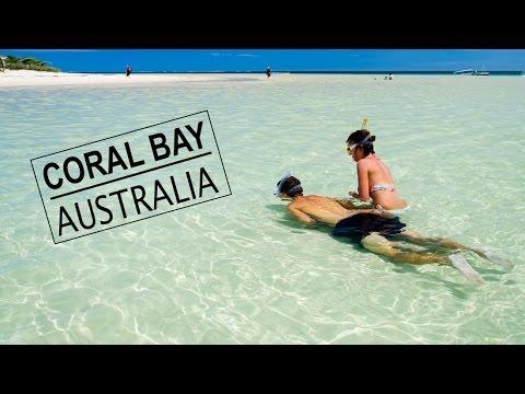 AUSTRALIA | Vlog 90 - Snorkeling the Ningaloo Reef!!!