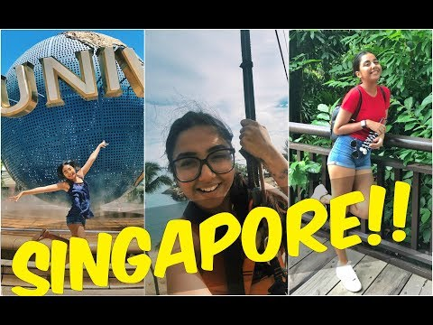 Singapore Vlog #1 | Universal Studios, Zoo, ZipLining & Much More! | MostlySane