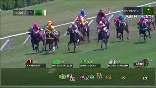 Vidéo de la course PMU QUENAC