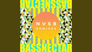 Fire (Bassnectar Remix)