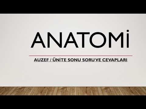 AUZEF ANATOMİ FİNAL ÇIKMASI YÜKSEK SORULAR  1