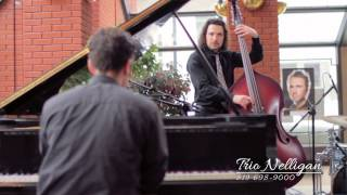 Trio Nelligan - Video Promotionnel