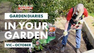 Gardening in October | Victoria | Bunnings Garden Diary