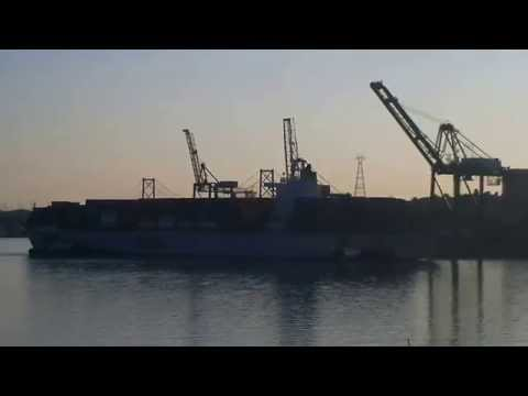 Container Ship OOCL VANCOUVER Docking at Fairview Cove Container Terminal in Halifax (Aug 26, 2014)