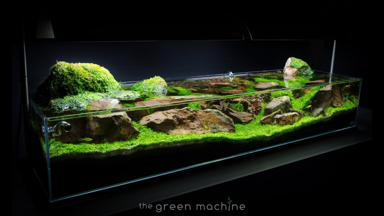 Aquascape Tutorial Guide Continuity By James Findley Amp The Green Machine Youtube