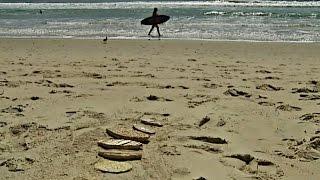 Фермер изобретает доску для сёрфинга из лемонграсса (новости)