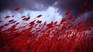 Zara - Kırmızı Buğday