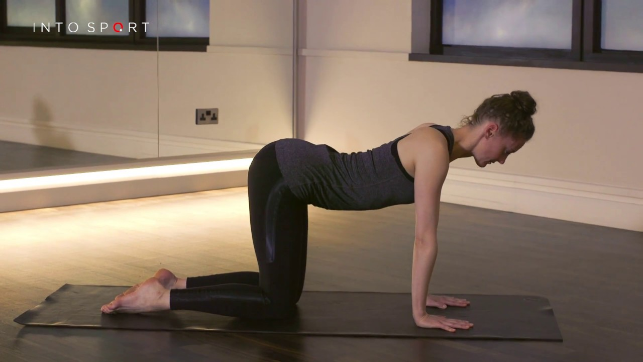 63 TUTORIAL YOGA CAT POSITION VIDEO WITH VIDEO ...