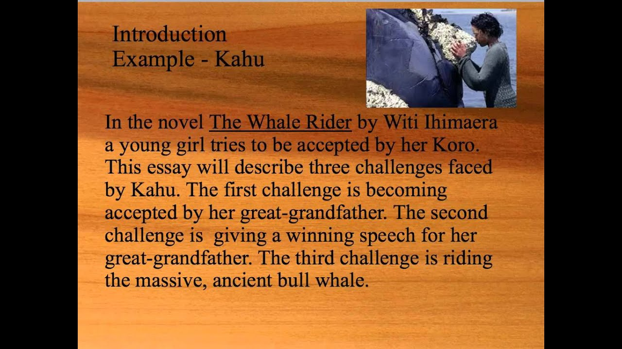 essay writing example the whale rider