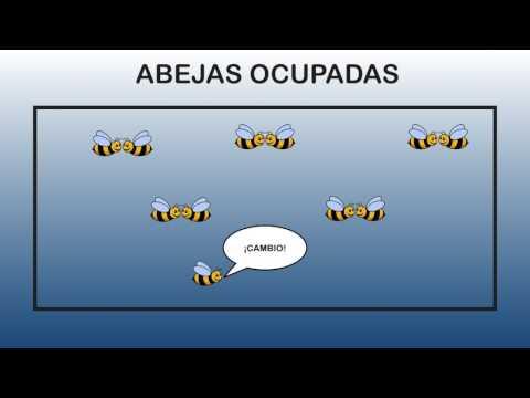Apicultores Bebés - Los Niños Aprenden A Cuidar De Las Abejas - Tablatura Juegos Educativos De La A de YouTube · Duración:  14 minutos 39 segundos  · 87 visualizaciones · cargado el 03.05.2017 · cargado por Kids Crying